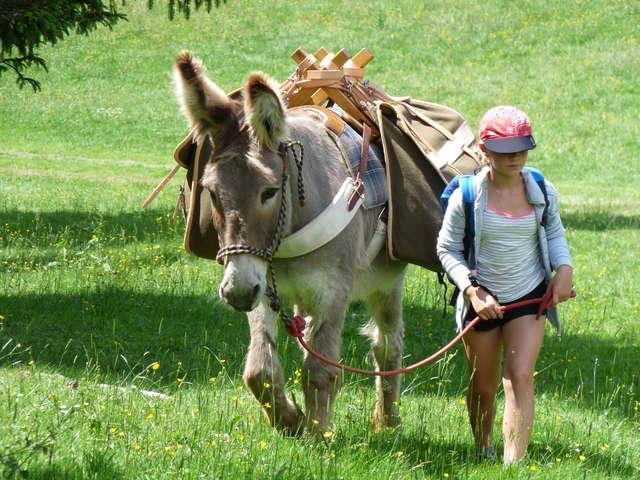 Pass'sport montagne : Randonnée au pas de l'âne