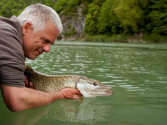 Fédération du Tarn-et-Garonne pour la pêche et la protection du milieu aquatique