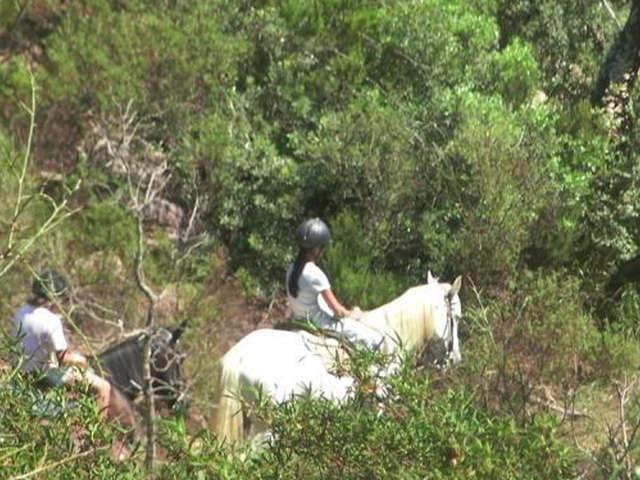Ranch Eldorado