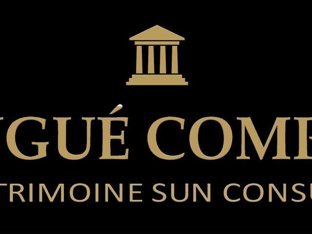 Tax Patrimoine Sun Consultant