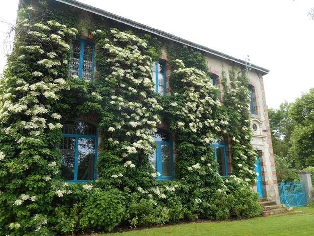 Chambres d'hôtes - L'Ecole buissonnière - Chambre bleue