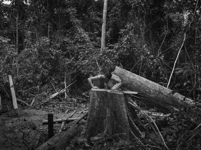 EXPOSITION AMAZONIA