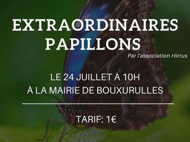 EXTRAORDINAIRES PAPILLONS