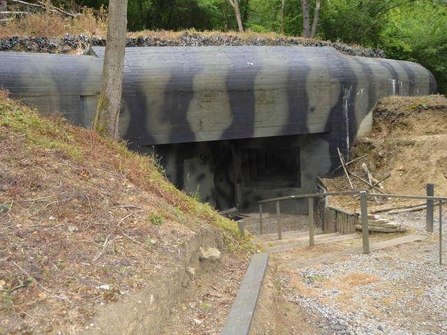 Visite guidée du Wolfsschlucht 2 (ancien camp militaire de Margival)