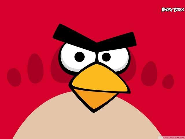 Tournoi jeux vidéo en Réalité Virtuelle : Angry Bird