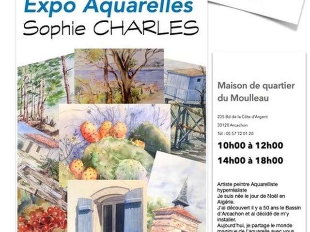 Exposition Aquaralles de Sophie Charles