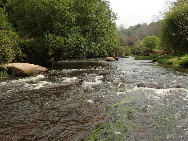Léguer en fête - Chantier rivière festif