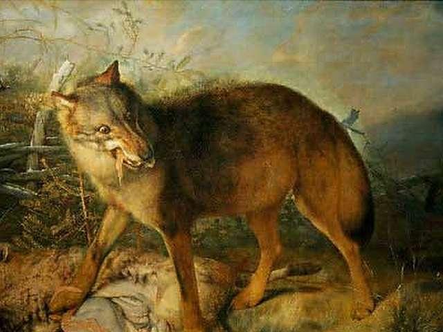 Semaine de Samain - Conférence sur le loup-garou