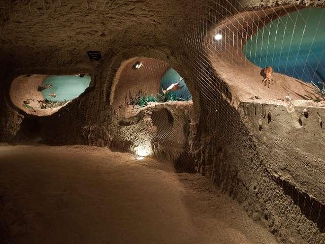 Fascinant Week-end V&D : Unique en Champagne ! Sous les vignes, découvrez... la Cave aux coquillages !