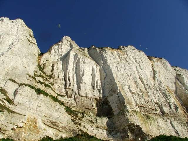 [ANIMATION CONFIRMEE] | Visite géographique : La falaise est vivante