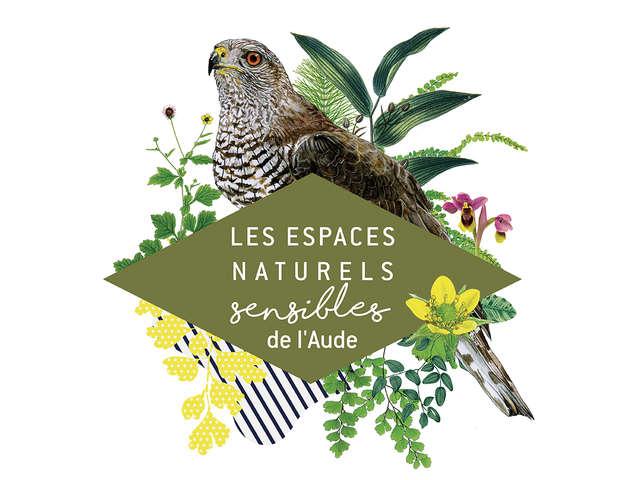 ENS - A LA RENCONTRE DES VAUTOURS