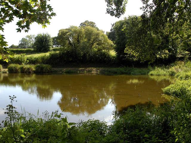 Parcours pêche de l'étang de Milin Saezh