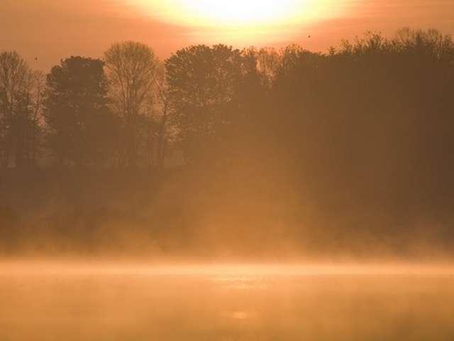 Autour de l'étang de Beffou