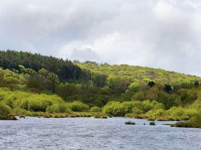 Parcours pêche des étangs du Guic