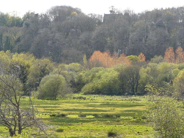 Marais de Trestel