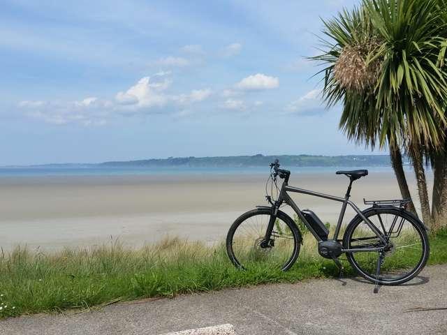 Les vélos de la baie