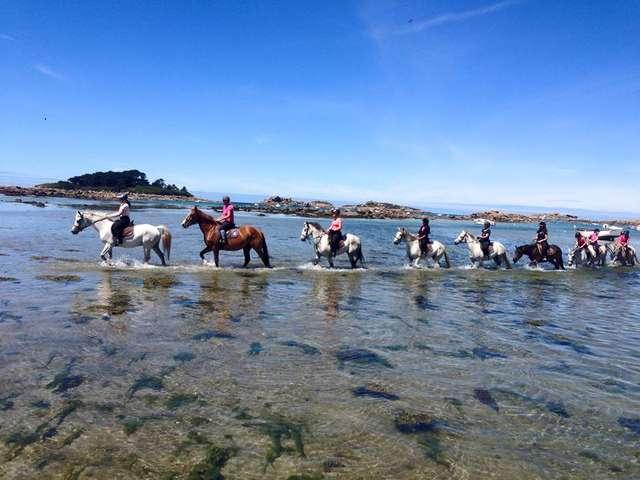 Rulan Equitation