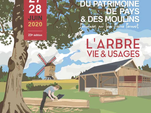 Journées du patrimoine de Pays & des Moulins - Le bois dans l'église Saint-Julien