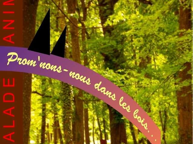 Prom'nons nous dans les bois
