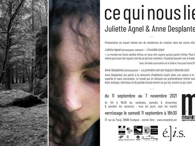 Rencontre avec Anne Desplantez à la galerie Méandres