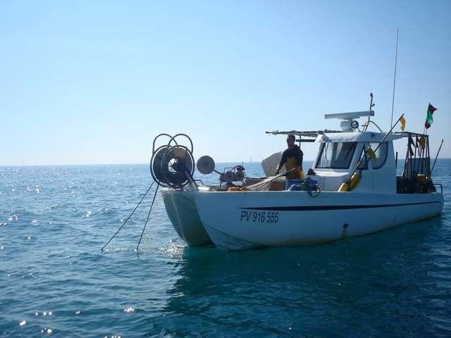 Découverte du métier de pêcheur-ligneur en mer - Erwan Berton à bord de Fleur de Sel