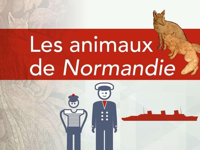 Jeu de piste - Les animaux de Normandie