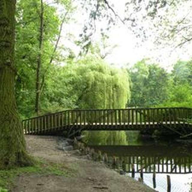 Parc Fenain