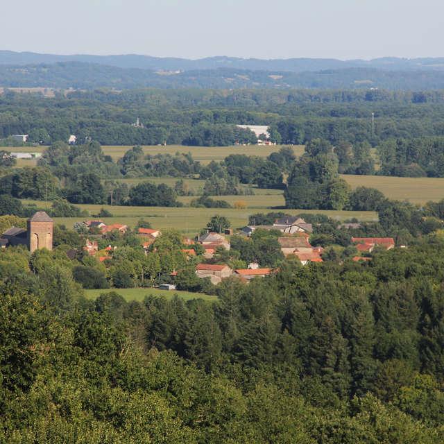 Descubrimiento del sendero del bosque municipal de Larreule