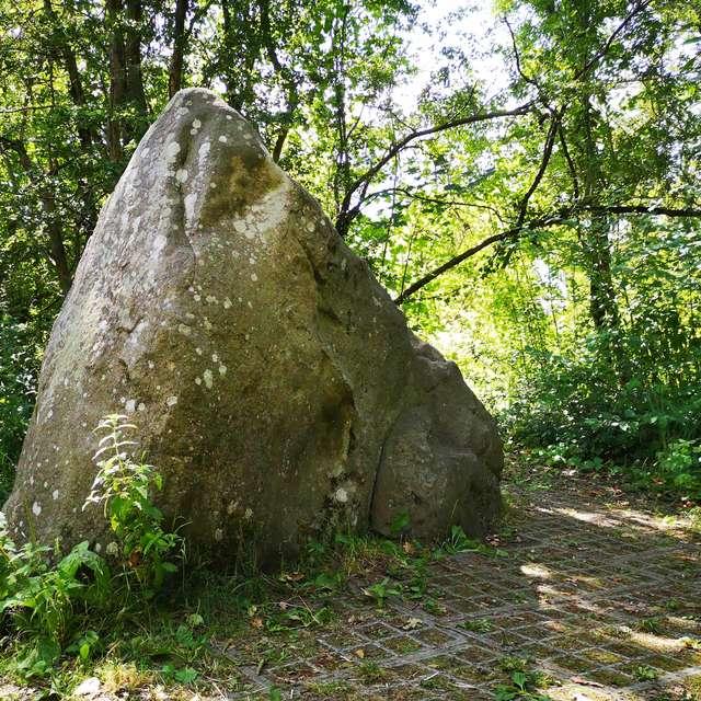 La pierre qui pousse