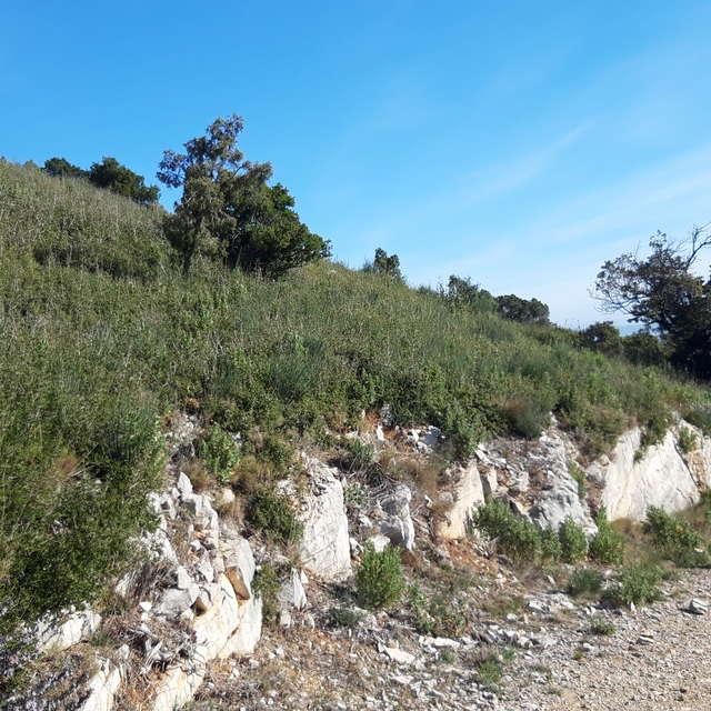 Mont Julien