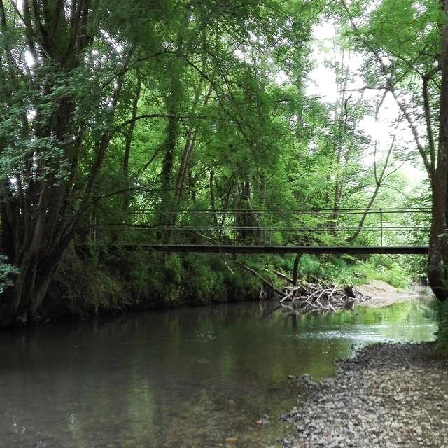Sentier de la forêt du Bernet