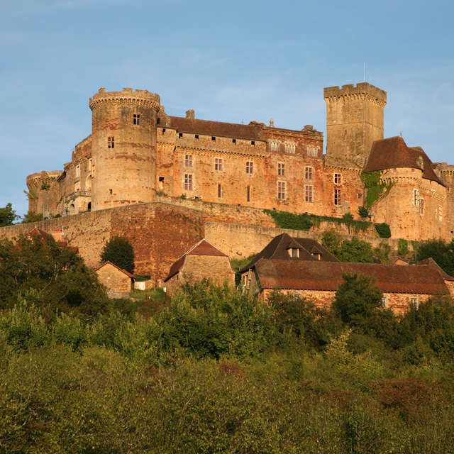 La Faune  Sauvage, Habitants Discrets du Château de Castelnau