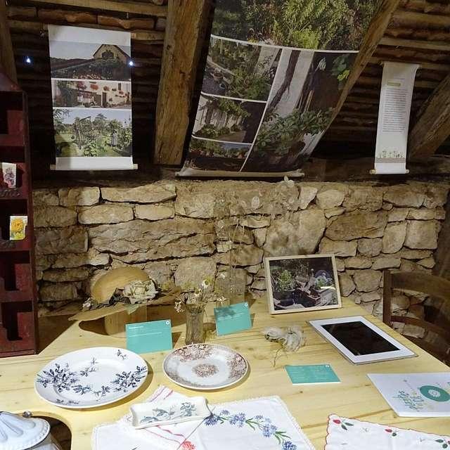 Château Des Doyens : Exposition Plantes et Compagnie