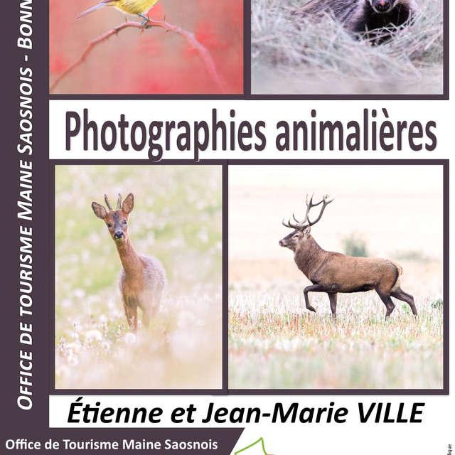 EXPOSITION DE PHOTOGRAPHIES ANIMALIÈRES