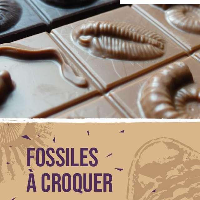 UN ATELIER CHOCOLATÉ GÉOPARC «FOSSILES À CROQUER»  - ANNULÉ