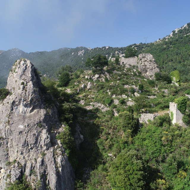 Natura 2000 : Vallée du Careï - Collines de Castillon