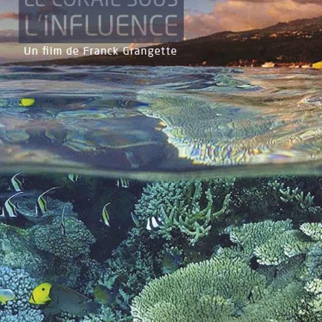 Ecran nature à Porquerolles - Réunion, le corail sous influence (F.Grangette)