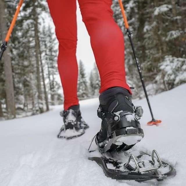 Snowshoeing and tartiflette