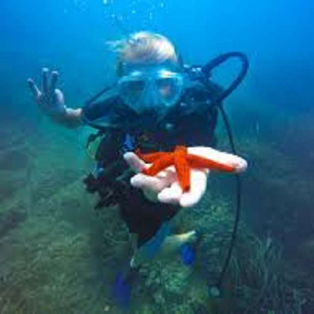 Palmes Beach Diving Center