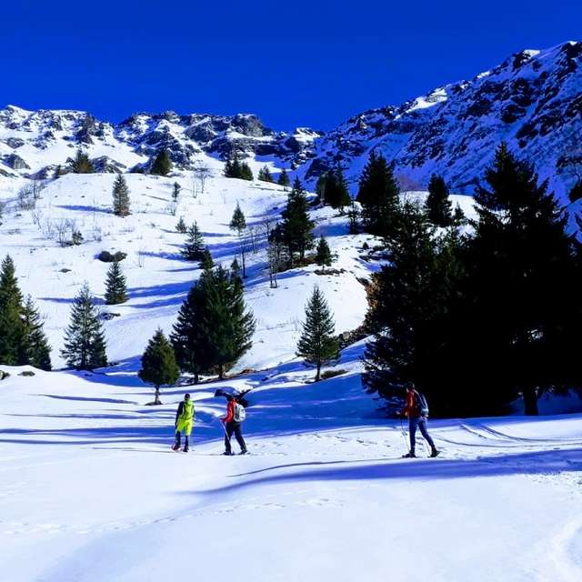 Snowshoeing tour with a guide on the theme of