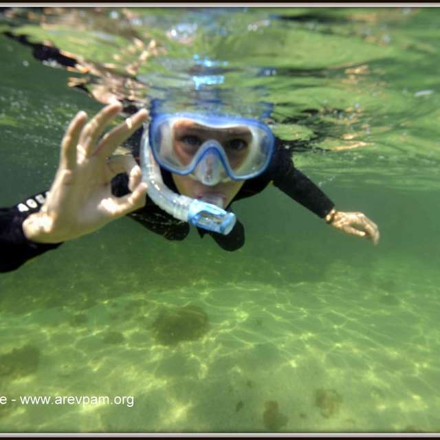 Snorkling archaeological submarine trail
