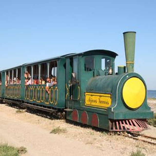 The little train of Méjanes
