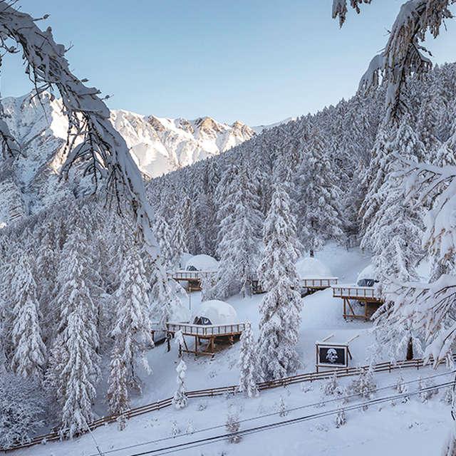 Alpin D'Hôme