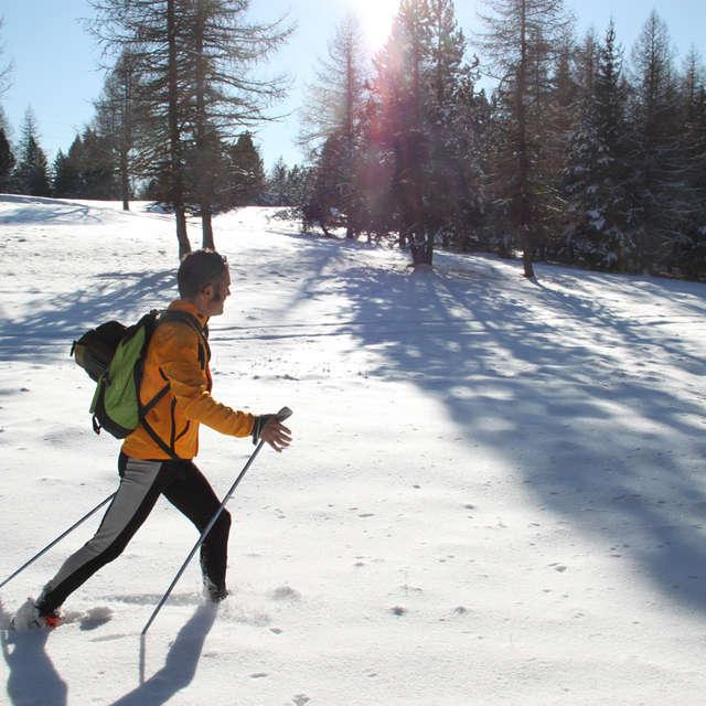 Marche nordique - Accompagnateurs en montagne du Champsaur