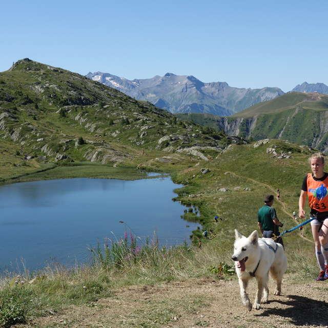 Trophée des Montagnes 2021 - Canicross