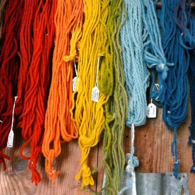 Atelier découverte : Teinture végétale sur laine
