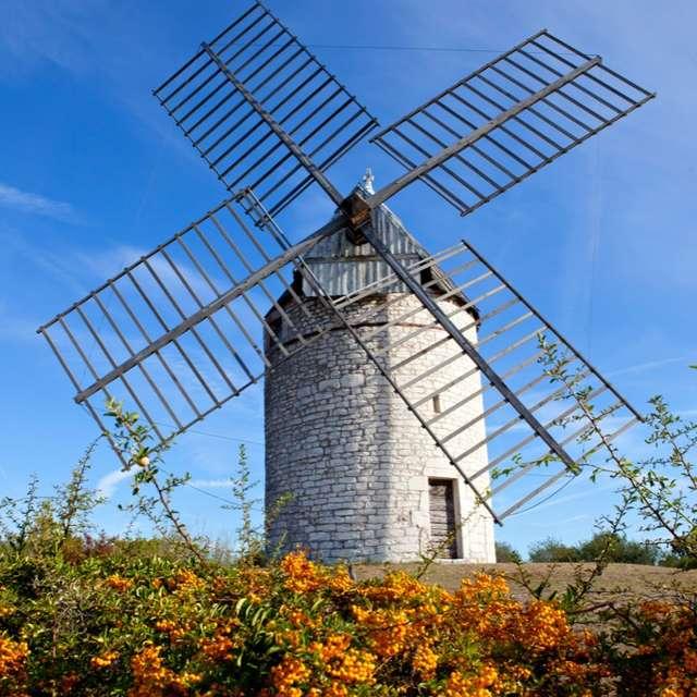 Journées Européennes du Patrimoine : Visites commentées du Moulin