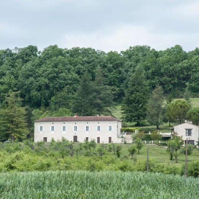 Domaine Lapèze - Vinyard Room