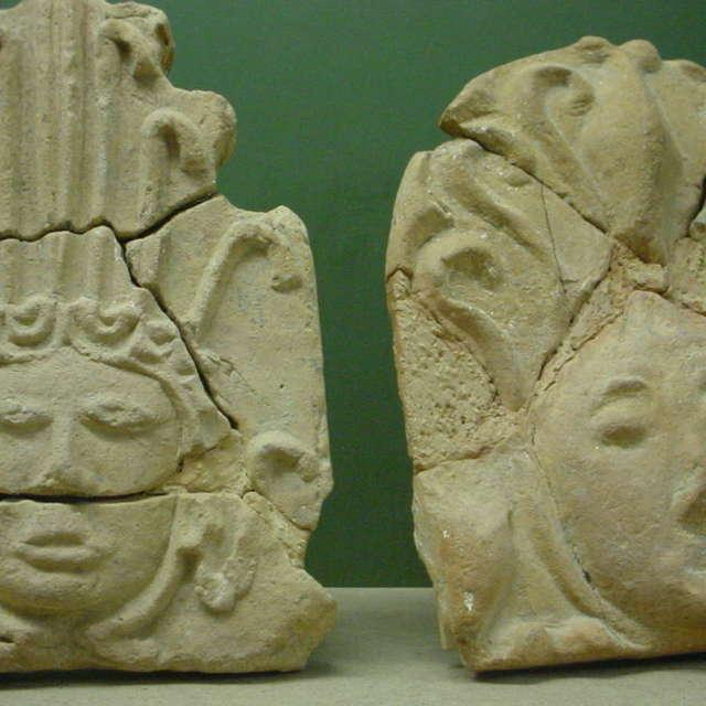 Musée Municipal Armand Viré - Espace Ammonites / Espace Archéologique