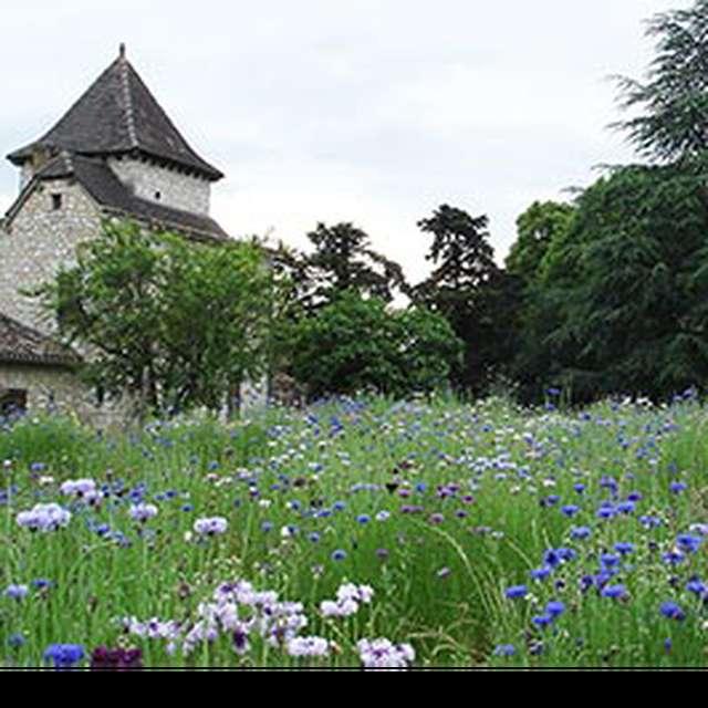 Château Vent d'Autan